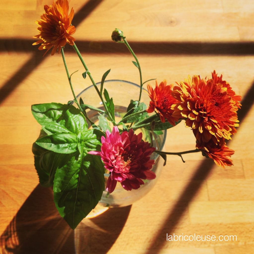 Mum flowers and basil tea