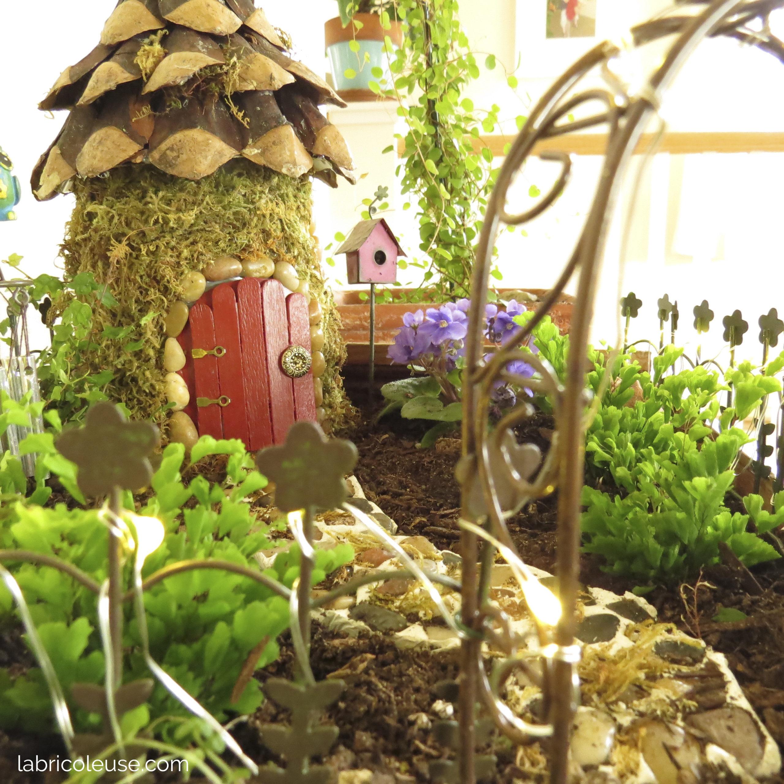 Jardin miniature, jardin de fée, vue de près.
